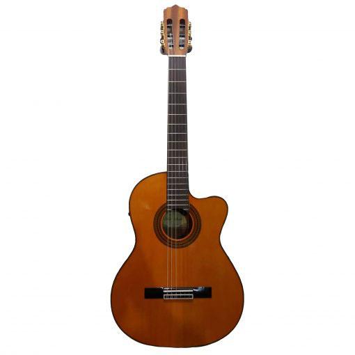 گیتار کلاسیک پالادو مدل CG 80-EQ، فروشگاه اینترنتی آف تپ، خرید آنلاین  لوازم موسیقی