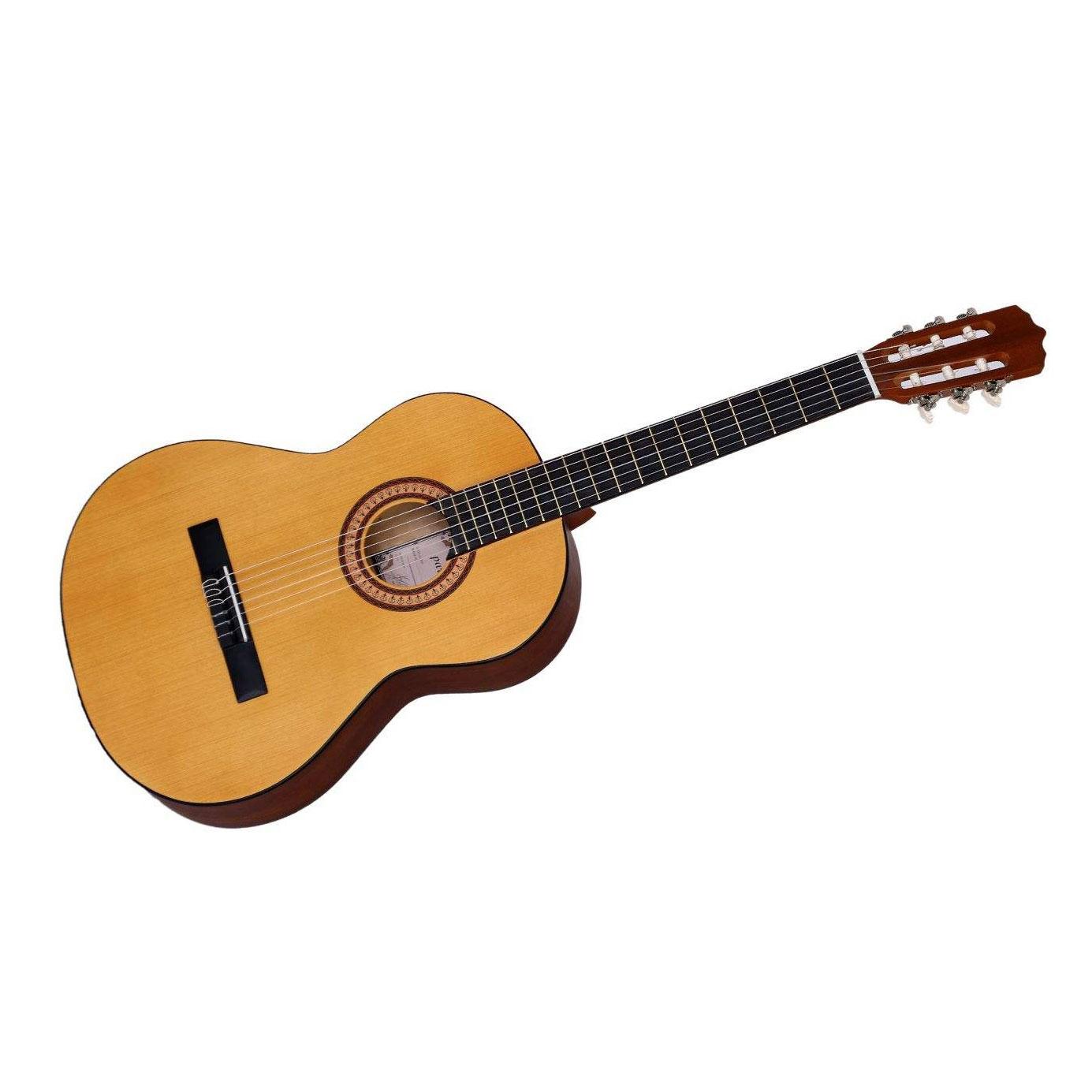 گیتار کلاسیک پارسی مدل M2، فروشگاه اینترنتی آف تپ، خرید آنلاین لوازم موسیقی، گیتار کلاسیک