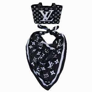 ست کیف و روسری زنانه طرح LV،خرید آنلاین،فروشگاه اینترنتی آف تپ